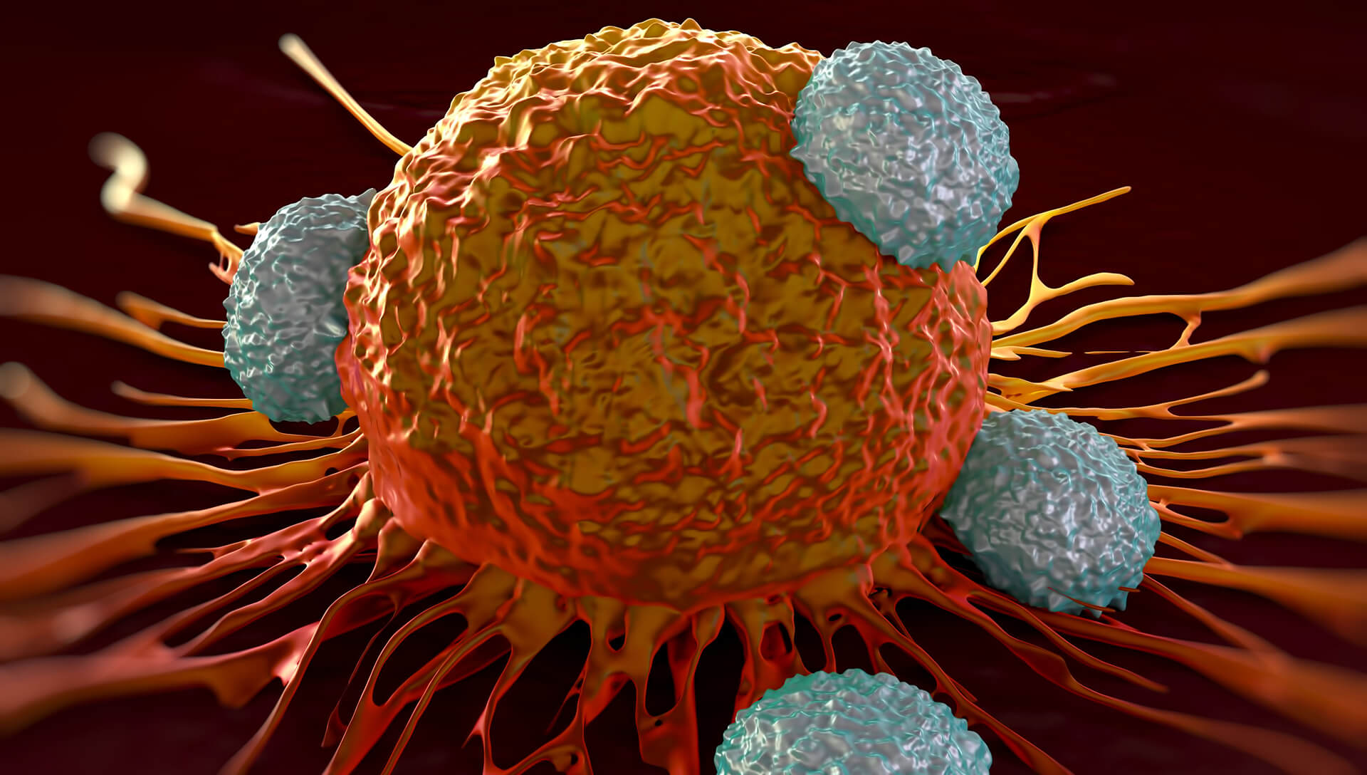 Immunotherapy: Hacking How the Body Fights Disease